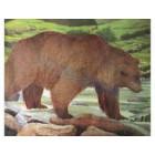 Jvd medve lőlap
